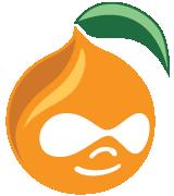 MiniCamp Online logo